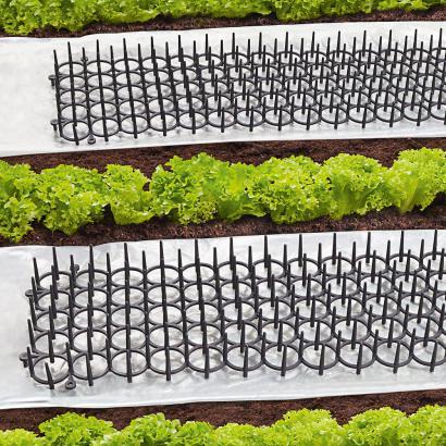 pflanzen schutzgitter set 4er set g nstig pflanzen. Black Bedroom Furniture Sets. Home Design Ideas